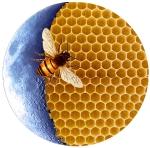 Honeycomb Moon